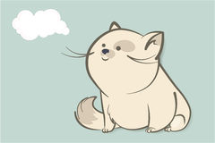 Fat white cat and abstract cloud Royalty Free Stock Photos