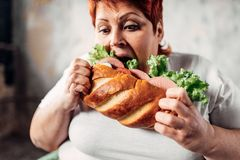 Fat woman eats sandwich, overweight and bulimic stock image