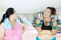 Fat woman speaks with her friend Stock Photography