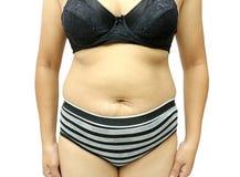 Fat women Royalty Free Stock Image