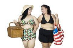 Fat women carrying picnic basket Royalty Free Stock Photo