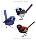 Fatato Wren Set Cartoon Vector Illustration dell'uccello Immagine Stock