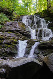 Faterfall Shypit in the Carpathians Stock Image