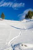 Fath снежка Стоковые Изображения