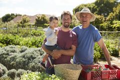 Father With Adult Son And Grandson Working On Allotment royalty free stock photo