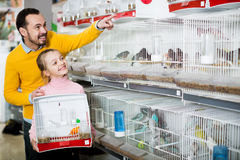Free Father And Daughter Choosing Pretty Bird Stock Images - 87554184
