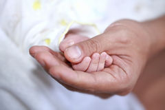 Father and baby hand. A father holds his baby's hand in his own Stock Photo