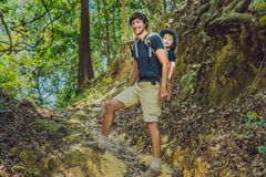 The father carries his son in a baby carrying is hiking in the f. Orest. Tourist is carrying a child on his back in the nature of Vietnam Royalty Free Stock Image