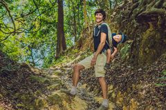 The father carries his son in a baby carrying is hiking in the forest. Tourist is carrying a child on his back in the nature of Vi Royalty Free Stock Images