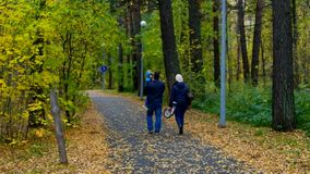 Father carrying child mother bike have rest in birch park. Backside view family walk in beautiful birch park father carries son in arms mother holds small bike stock video footage