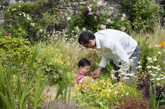 Father and child in the garden Stock Image