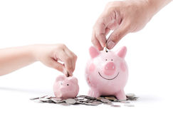 Father and child hand put coin to piggy bank isolated. On white background, saving money together concept Stock Images