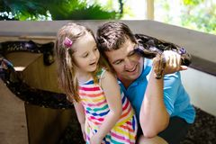 Father and child hold and feed python snake at zoo. Father and child hold and feed huge python snake at day trip to zoo. Dad and kid watching wild animals in Stock Photo