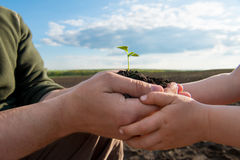 Father and child holding in hands a fresh young plant. New life. Stock Image
