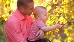 Father with the child on nature. Baby boy walking in the park with daddy stock video