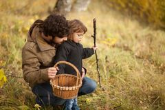 Father and child in the wild forest. Father and child searching mushrooms in the wild forest, dad and kid friendship. Fall day. Little girl exploring nature royalty free stock photos