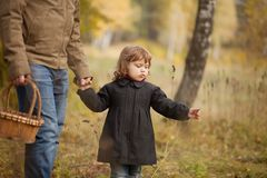 Father and child in the wild forest. Father and child searching mushrooms in the wild forest, dad and kid friendship. Fall day. Little girl exploring nature stock photo