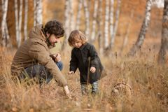 Father and child in the wild forest. Father and child searching mushrooms in the wild forest, dad and kid friendship. Fall day. Little girl exploring nature stock images