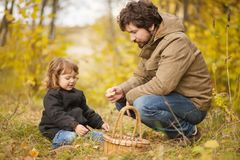 Father and child in the wild forest. Father and child searching mushrooms in the wild forest, dad and kid friendship. Fall day. Little girl exploring nature stock photography