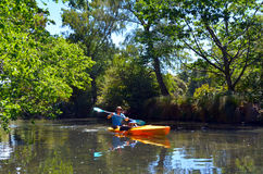 Father and children kayaking on the Avon River Christchurch - Ne stock image