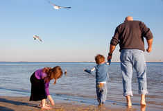 Father and Children at Shore. Father holding hands with toddler son while daughter picks up shell at seashore Stock Photography