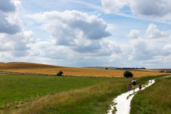 Father with children walking in countryside Stock Photography
