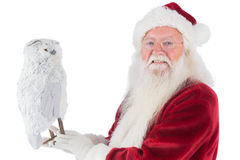 Father Christmas holds an owl Royalty Free Stock Images