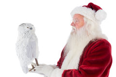 Father Christmas holds an owl Stock Photo