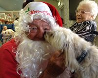 Father Christmas in an old people's Home. Father is loved by everyone, old people, young people and even man's best friend, dogs royalty free stock image