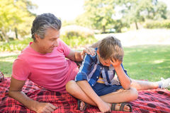 Father consoling his son at picnic in park. On a sunny day Stock Image