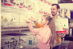 Father and daughter choosing pretty bird. Portrait happy father and daughter choosing pretty bird for keeping in pet shop Stock Images
