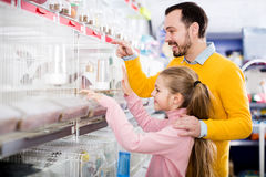 Father and daughter choosing pretty bird. Portrait young father and daughter choosing pretty bird for keeping in pet shop Royalty Free Stock Photography