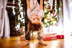 Father with daughter at Christmas tree holding her upside down. Royalty Free Stock Images