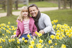 Father And Daughter In Daffodils Stock Photo