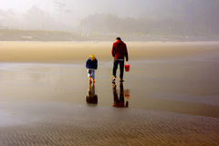 Man and Child Explore Beach Low Tide. Early morning fog and extreme low tide finds this family duo out looking for seashells. I was most intrigued with the Stock Photos