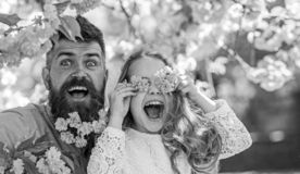 Father and daughter on happy face play with flowers as glasses, sakura background. Child and man with tender pink. Father and daughter on happy face play with stock photos