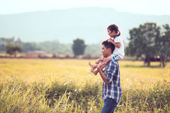 Father and daughter having fun to play together in the cornfield Royalty Free Stock Photos