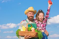 Father and daughter hold basket harvest vegetables. Gardening and harvesting. Family farm concept. Man bearded rustic stock image