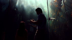 Father and daughter looking at fish tank and taking pictures stock video
