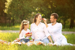 father of a daughter and a pregnant mom at a picnic Royalty Free Stock Photos