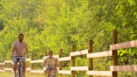 Father and daughter riding bicycles in summer park stock footage