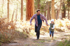 Father And Daughter Running Through Fall Woodland royalty free stock photography