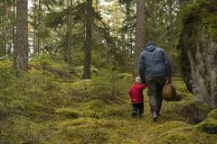Father and daughter searching for mushrooms Stock Photo