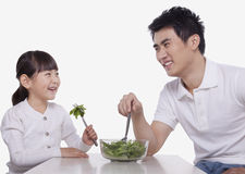 Father and Daughter sharing a salad, studio shot Royalty Free Stock Photo