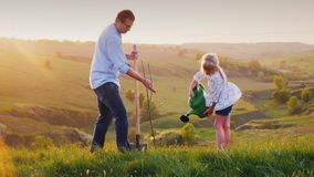 Father and daughter work together. They plant a tree seedling in a picturesque place. The father digs a hole, the. Daughter holds a watering can and helps him stock footage