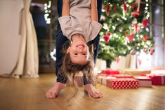 Father with daugter at Christmas tree holding her upside down. Stock Photos