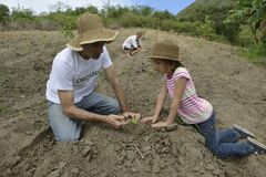 Father and daugther planting Royalty Free Stock Photos