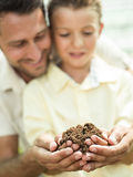 Father educate son to care a soil. Father educate son to care a plant stock image