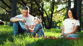 Father entertaining his baby girl with soap bubbles at family picnic in park. Traditional family of three sitting on green grass outdoors. people, family stock video