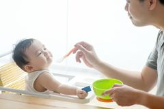Father feeding baby food. Stock Photos